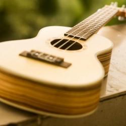 comparatif-ukulele