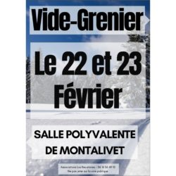 Vide-grenier-22-février-mini